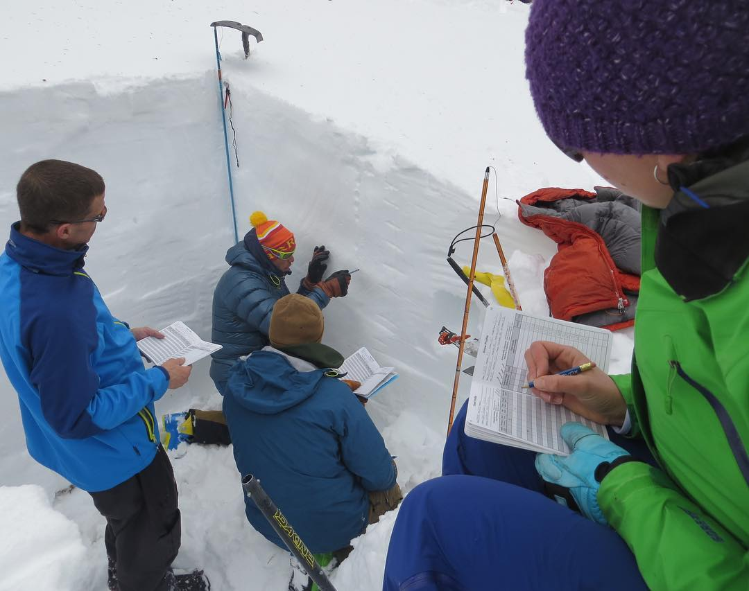 snow pit analysis on AIARE Avy 1 Course
